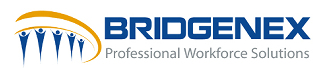 bridgenex logo
